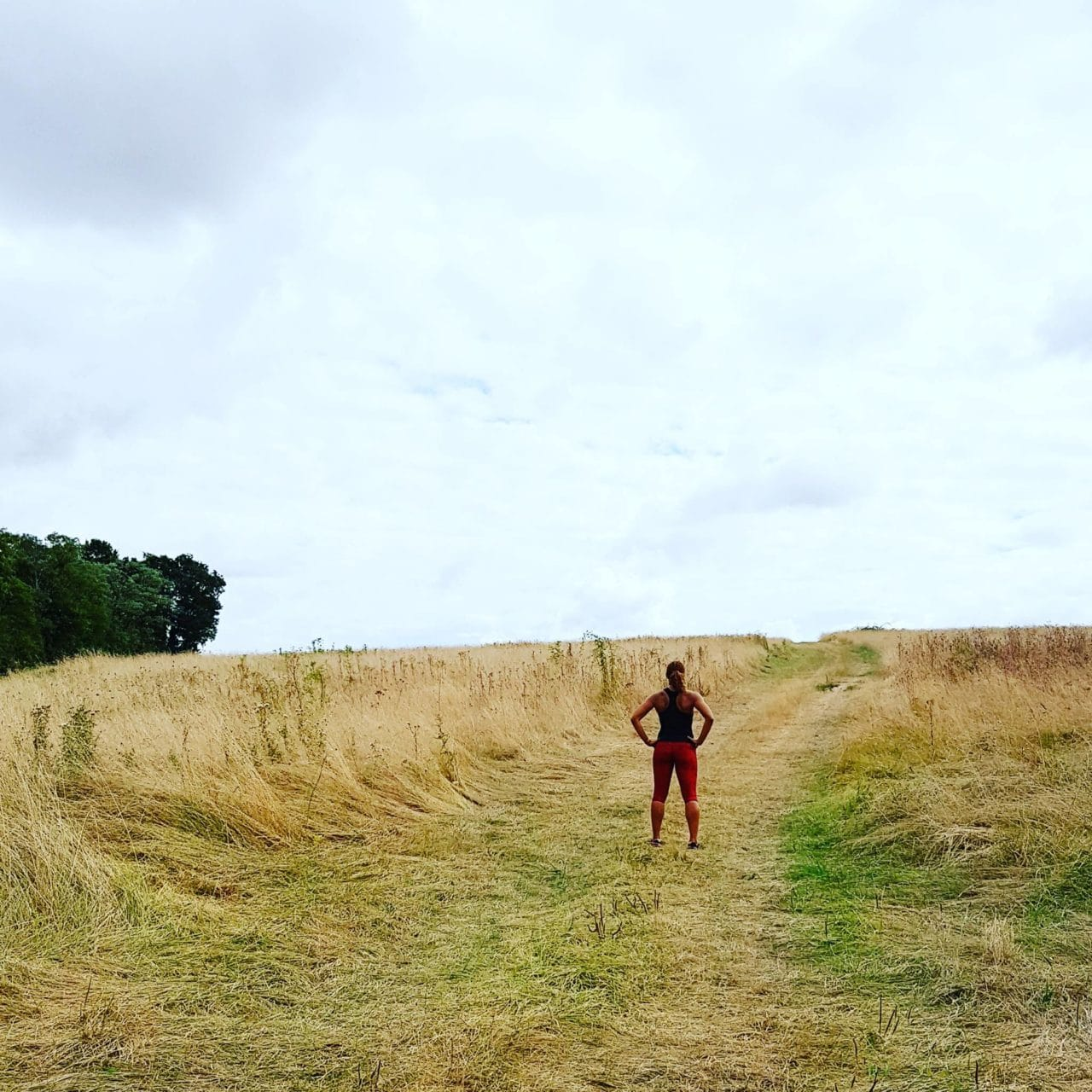 running-mytrainingdiary